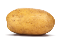 Potato Test Club